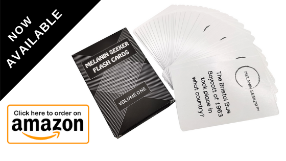 Melanin Seeker Flash Cards